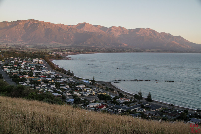 Best cities in New Zealand to stop on your itinerary - Kaikoura
