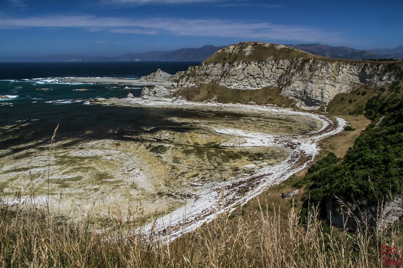 Kaikoura peninsula walkway to Whalers Bay 5