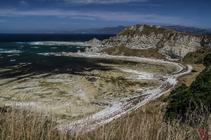 Kaikoura Peninsula Walk cliff top