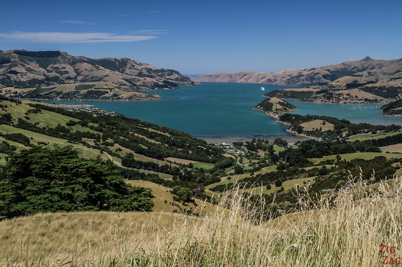 Best cities in New Zealand to stop on your itinerary - Akaroa