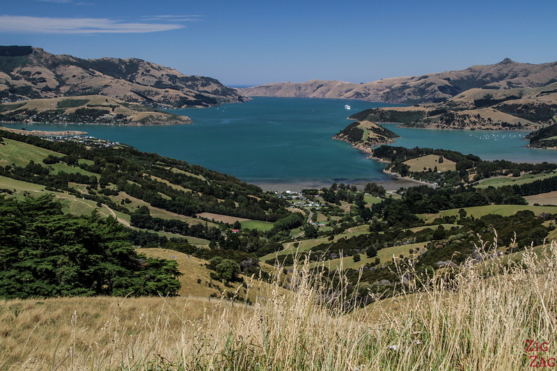 What to do in New Zealand's South Island - Akaroa
