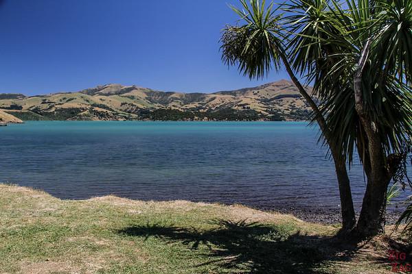 Neuseeland Reiseroute 2 Wochen - Akaora 3