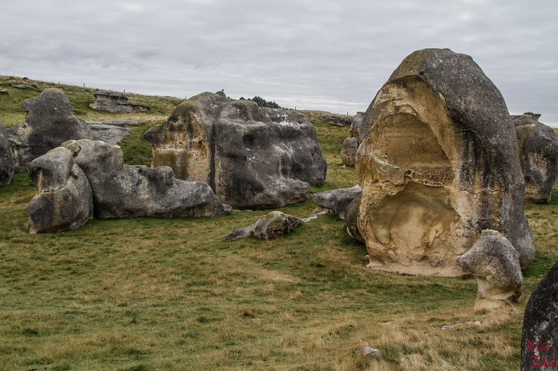 Why visit Elephant Rocks in New Zealand?