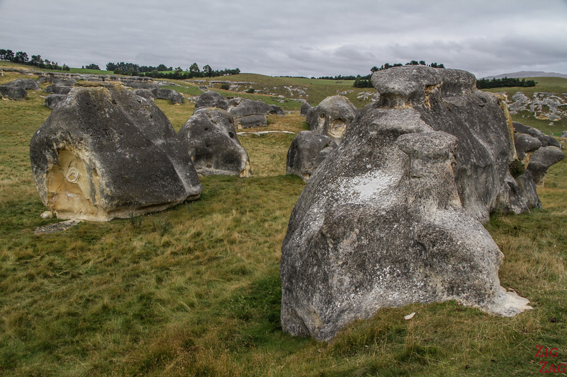 Elephant Rocks New Zealand - photo 7
