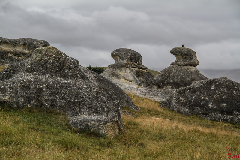 Elephant Rocks New Zealand - photo 2