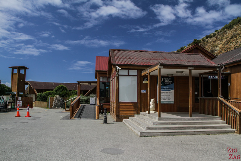 Things to do around Moeraki - Oamaru penguins