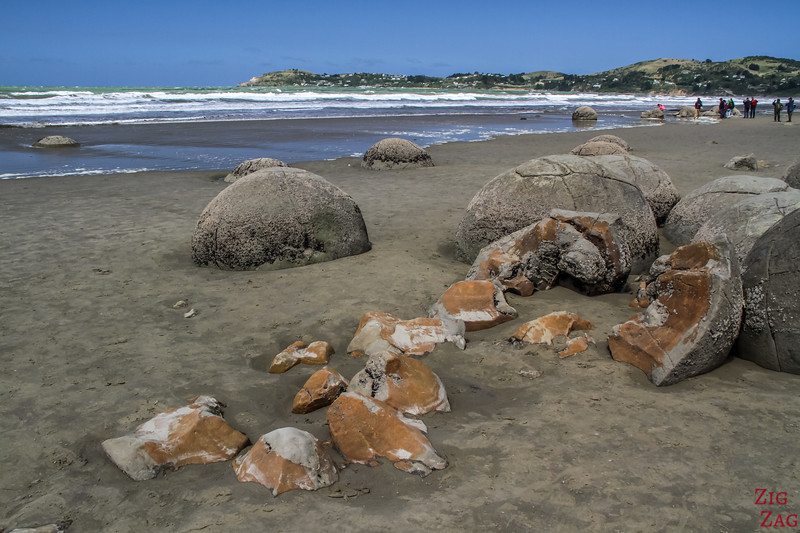 Moeraki boulders New Zealand photo 4