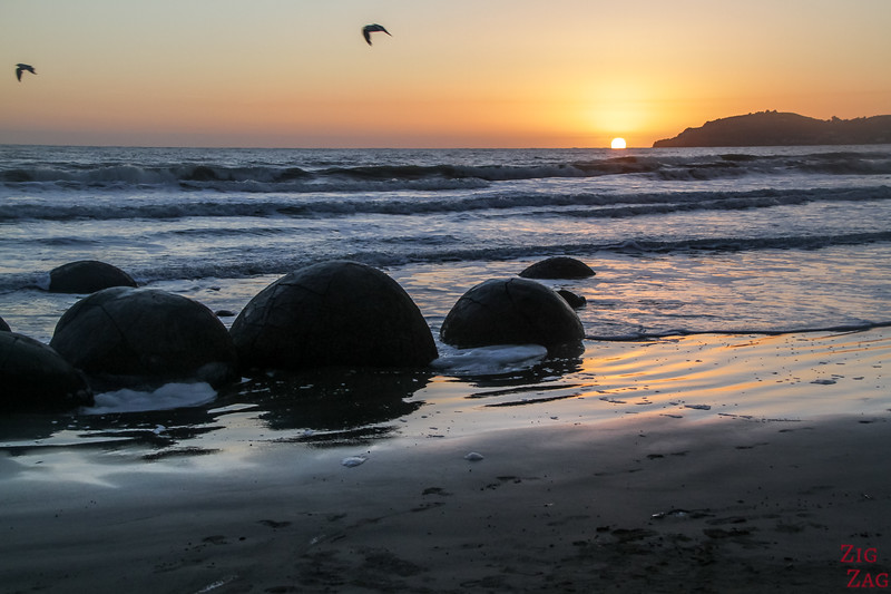 Best time to visit the Moeraki Boulders sunrise