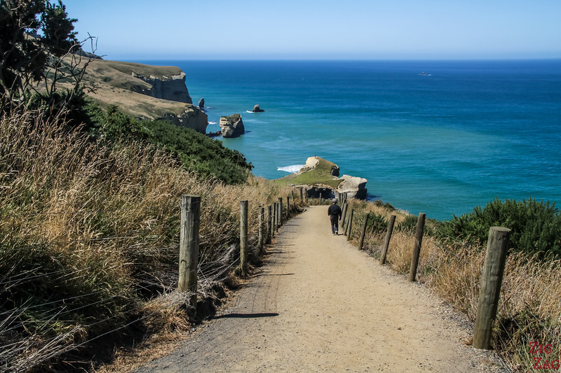 Tunnel beach track - difficulty 2