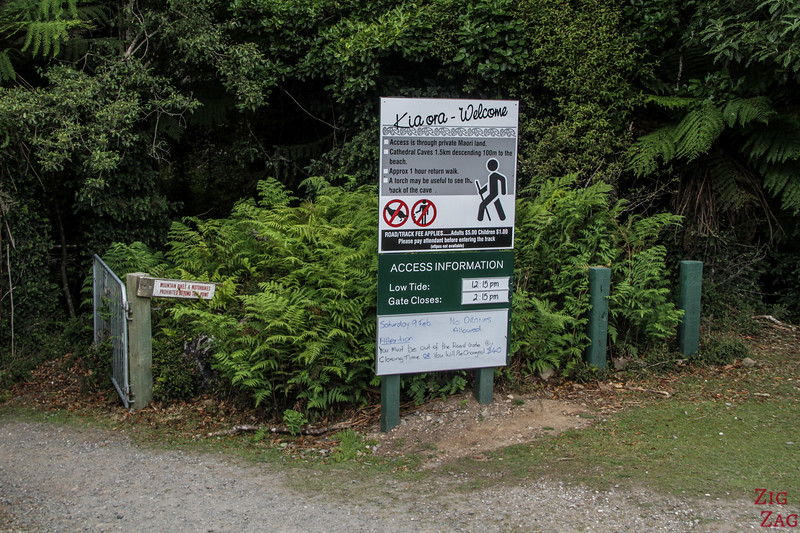 Cathedral Caves Walk (Chaslands) - rando dans la forêt côtière