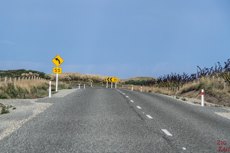 Road to Waipapa Point carpark