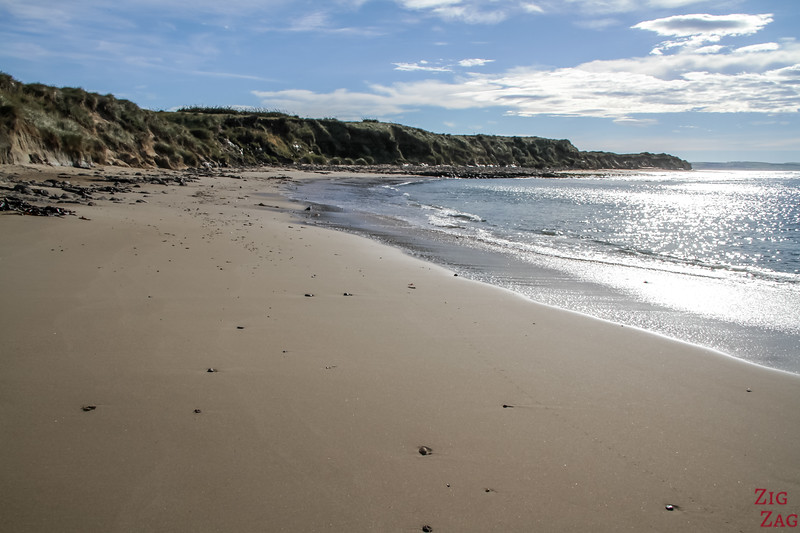 Waipapa point beach 1