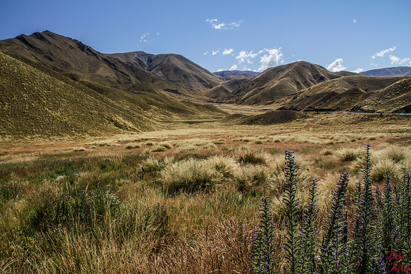 New Zealand South Island Itinerary 7 days - Lindis Pass