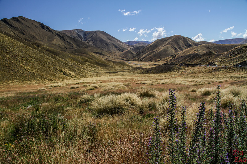 2 Wochen in Neuseeland Route - Lindis Pass