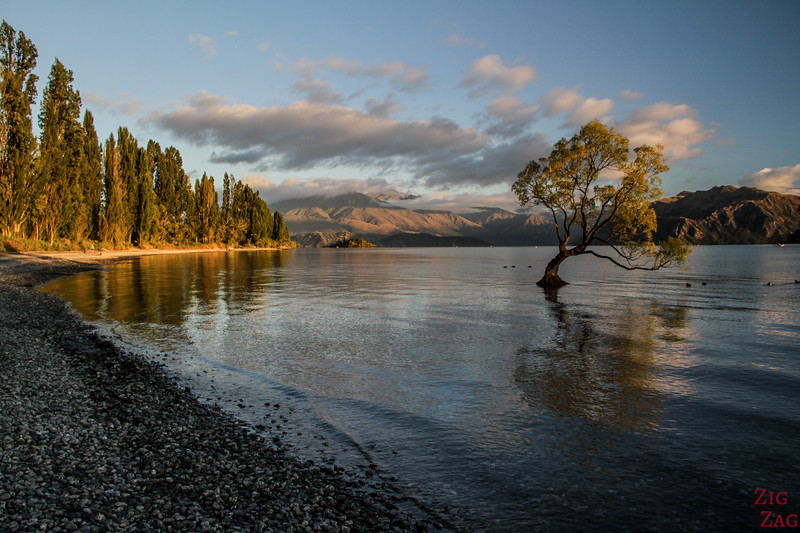 New Zealand lake beach - Wanaka