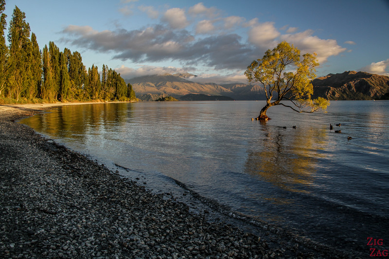 Best cities in New Zealand to stop on your itinerary - Wanaka