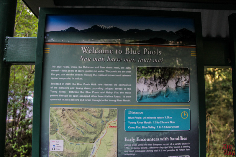 Haast Blue Pools Walk - map