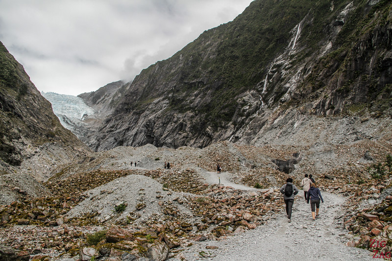 Walk to Franz Josef Glacier New Zealand 4