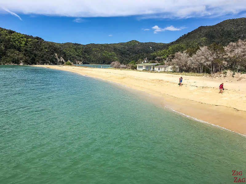 activities in South Island New Zealand - Abel Tasman