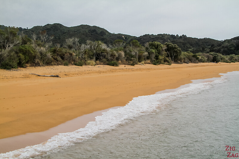 Best beaches in New Zealand - Abel tasman
