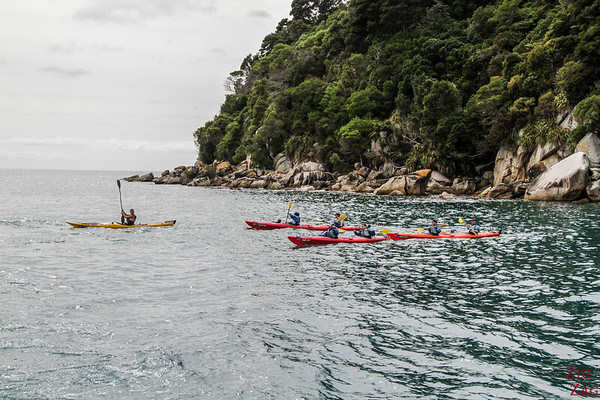 New Zealand South Island Itinerary 7 days - Abel Tasman Kayak