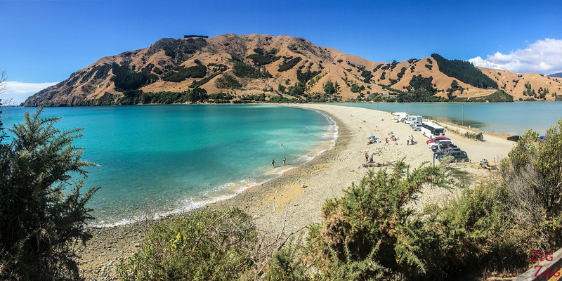 Best beaches in New Zealand - Cable bay