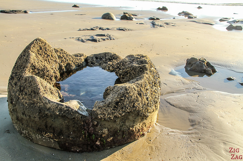 What are the Moeraki boulders made from? Geology introduction