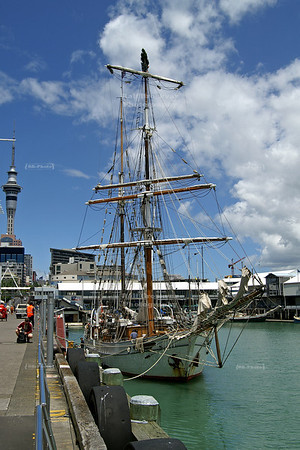 Tall ship decorated with a Christmas tree on top of the mast anchoring in Auckland harbor, New Zealand