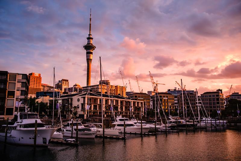 20181229_New_Zealand_FXT36050