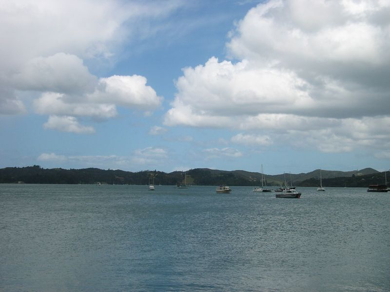 The Bay of Islands