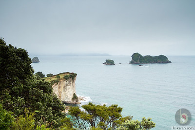 Cathedral cove - Coromandel : New zealand