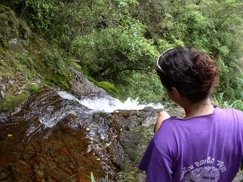 Yaara, looking at the falls