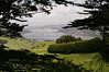 View from Larnach Castel over the Otago Bay towards Dunedin, South Island, New Zealand