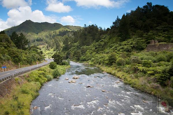 Near Auckland : New Zealand