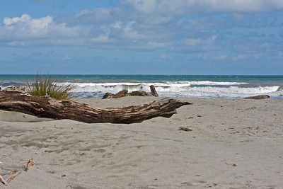 Log on the beach at Ship Creek.  January 2010