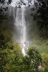 Wairere Falls - Kaimai-Mamaku Forest Park: New Zealand