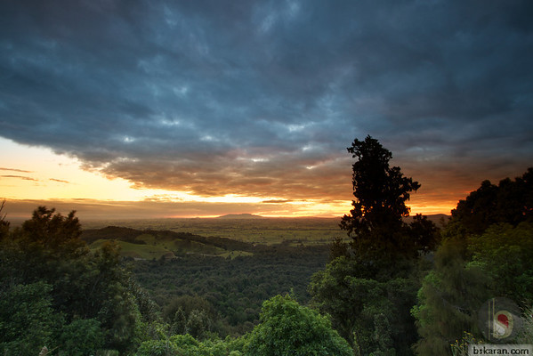Kaimai-Mamaku Forest Park: New Zealand