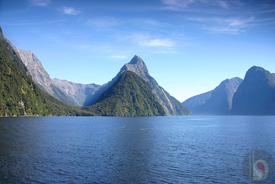 fly to Milford Sound : New Zealand