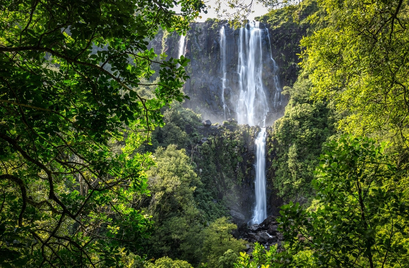 Wairere waterfall - highest waterfall in New Zealand North Island