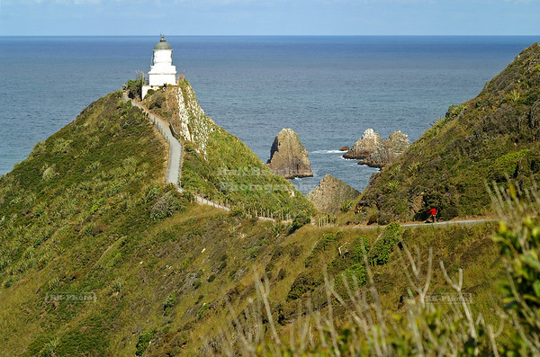 Nugget Point Lighthouse, Catlins coast, South Island, New Zealand