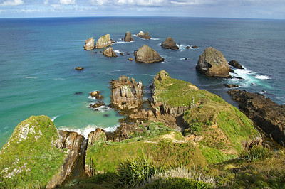 Rocks (nuggets) at Nugget Point, Catlins coast, Otago, South Island, New Zealand