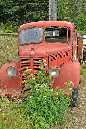Neglected vintage truck near Kingston Railway Station, Southland, New Zealand