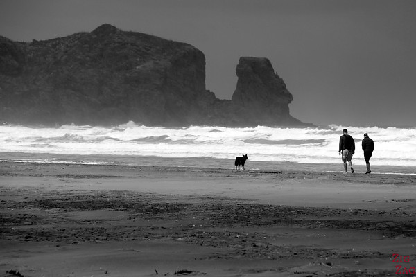 Bethells Beach, New Zealand Photo 2