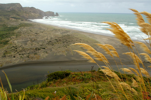 Bethells Beach, New Zealand Photo 3
