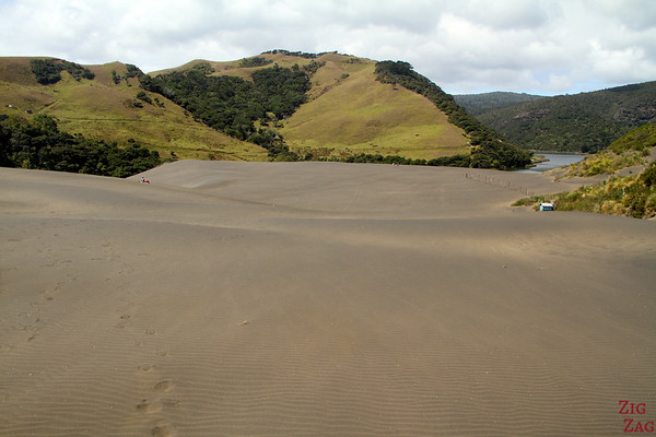 Black Sand Dune, New Zealand Photo 2
