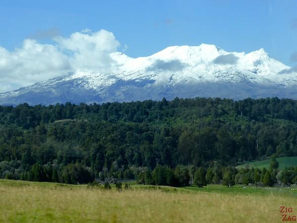 Landscape of Tongariro NP New Zealand Photo 4
