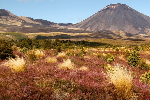 Colors of Tongariro