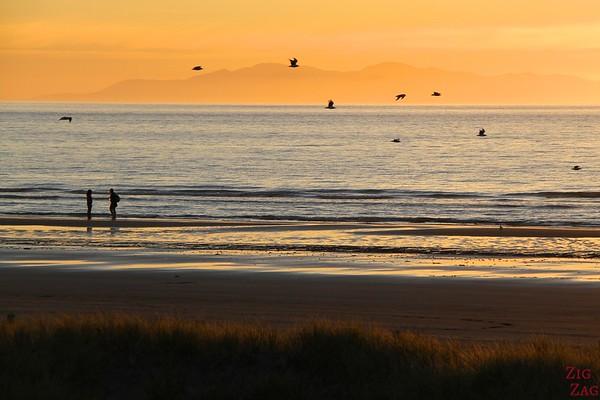 Beach sunset in New Zealand 1