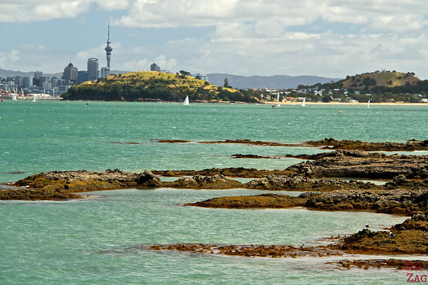 Photographing Auckland Skyline from Fuller cruise, New Zealand photo 3