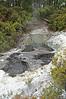 Boiling pothole in Wai-O-Tapu Geothermal Wonderland, Rotorua, North Island, New Zealand